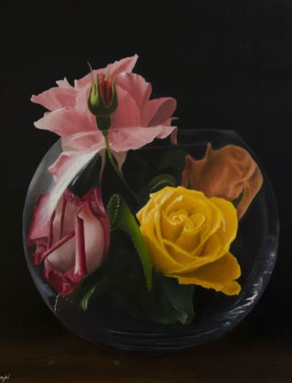 Rose in vitro